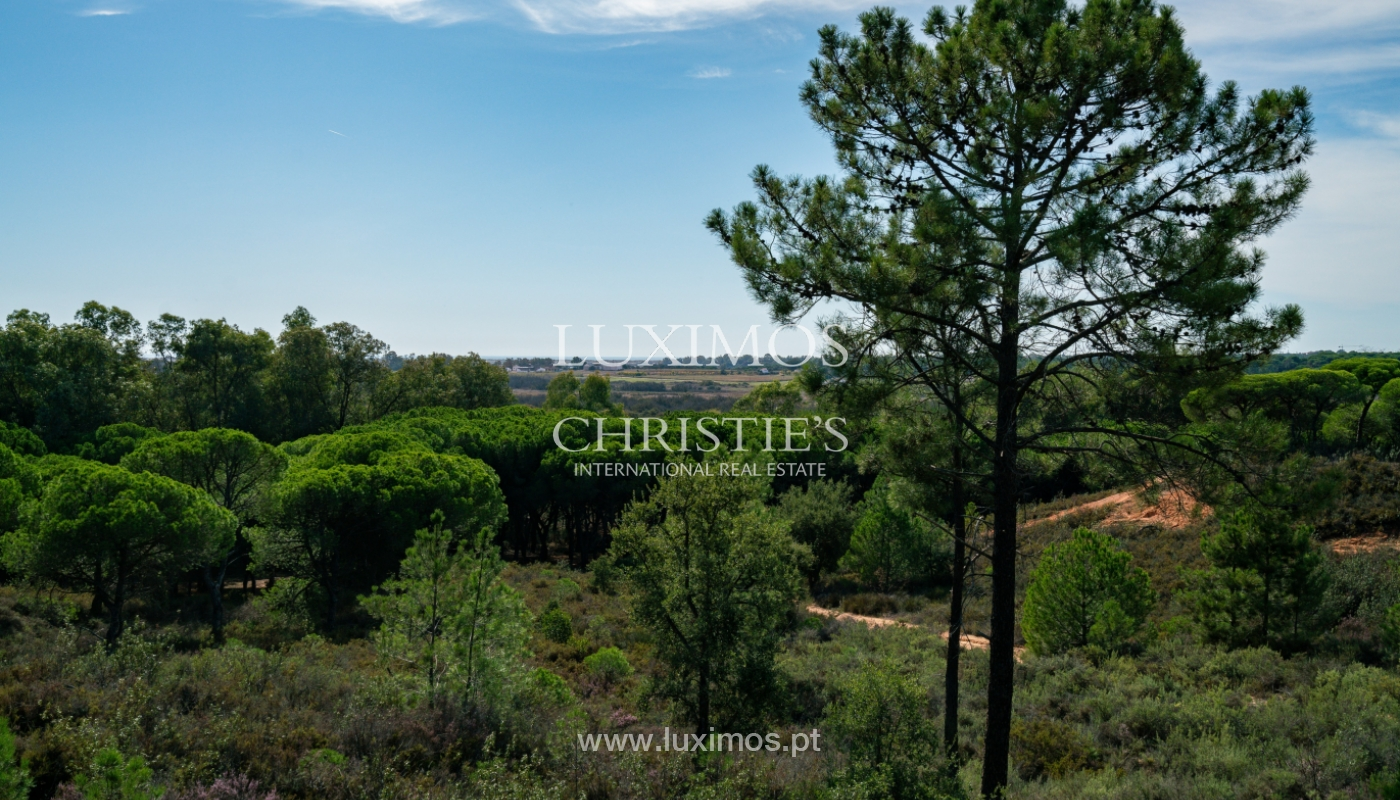 Farm with large plot of land, in the Ria Formosa Natural Park, Faro, Algarve_155969