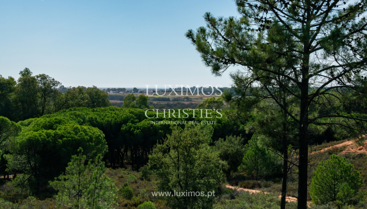 Farm with large plot of land, in the Ria Formosa Natural Park, Faro, Algarve_155970
