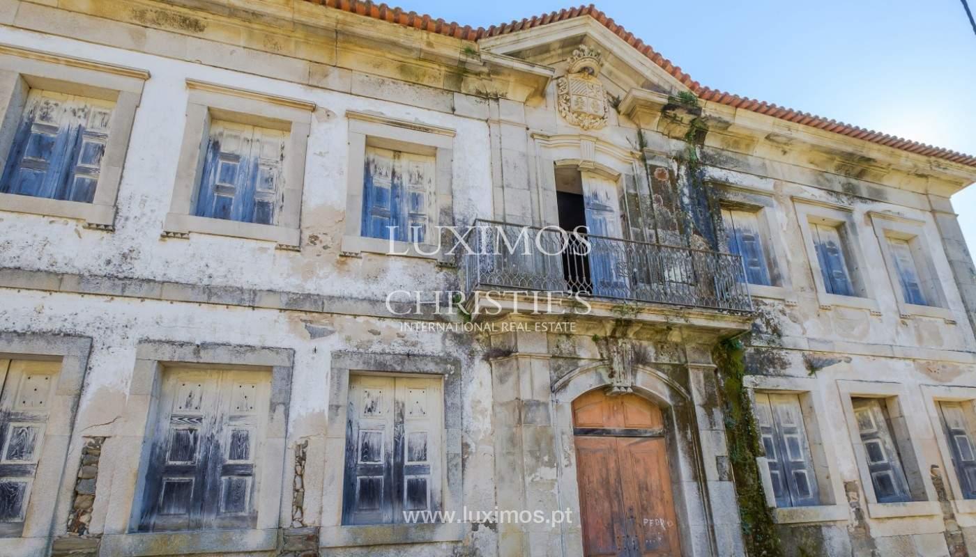 Venta de un palacio del siglo XIX para rehabilitar, Valle del Duero, Lamego, Portugal_156891
