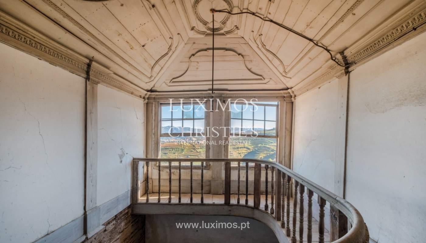 Venta de un palacio del siglo XIX para rehabilitar, Valle del Duero, Lamego, Portugal_156966