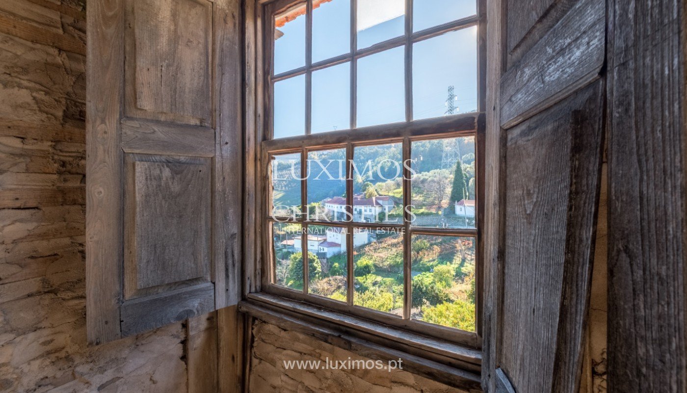 19th Century Palace sale to refurbish, Douro Valley, Lamego, Portugal_156984