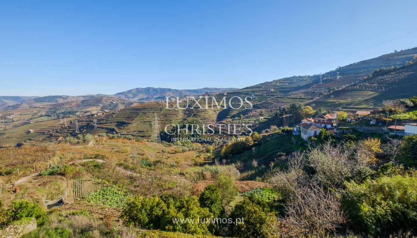 19th Century Palace sale to refurbish, Douro Valley, Lamego, Portugal_157000
