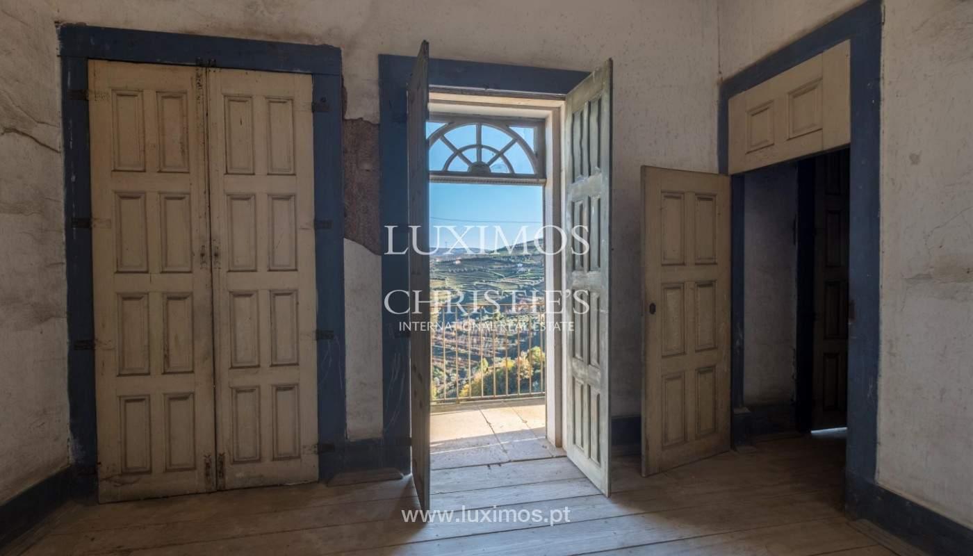 Venta de un palacio del siglo XIX para rehabilitar, Valle del Duero, Lamego, Portugal_157008