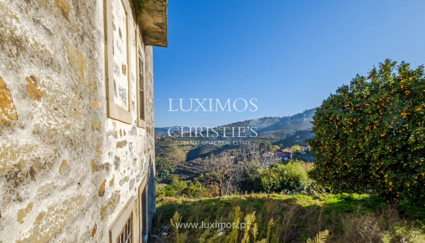 19th Century Palace sale to refurbish, Douro Valley, Lamego, Portugal_157031