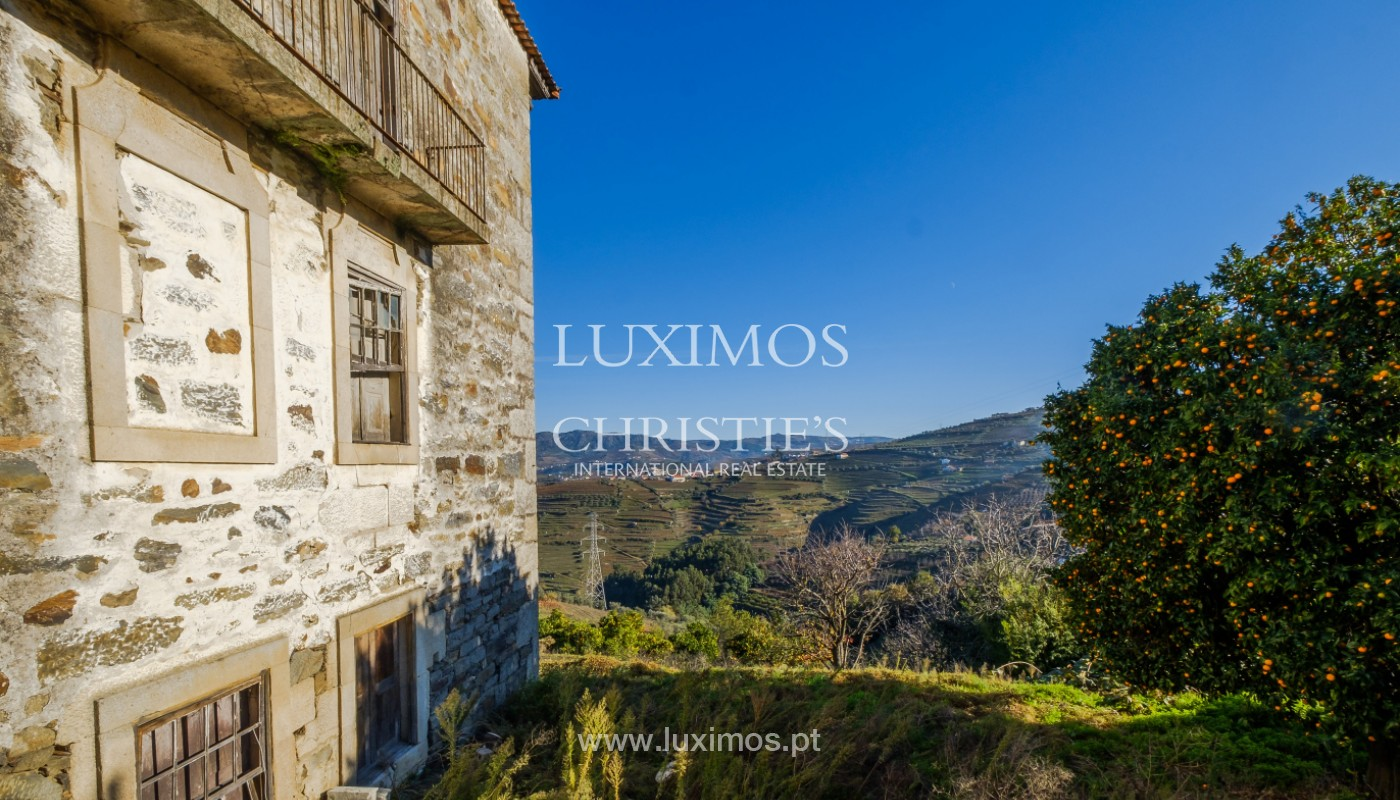19th Century Palace sale to refurbish, Douro Valley, Lamego, Portugal_157035