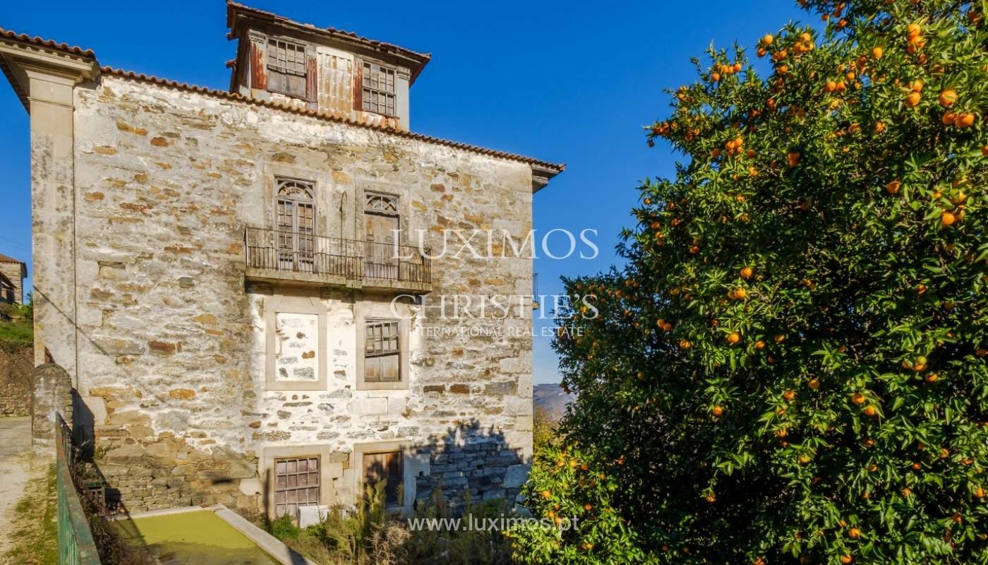 Venta de un palacio del siglo XIX para rehabilitar, Valle del Duero, Lamego, Portugal_157041