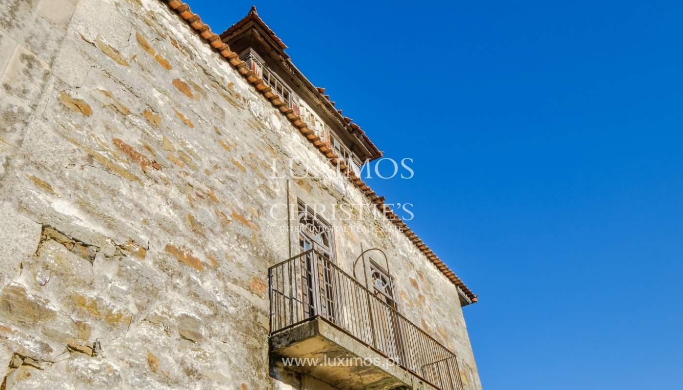Venta de un palacio del siglo XIX para rehabilitar, Valle del Duero, Lamego, Portugal_157048