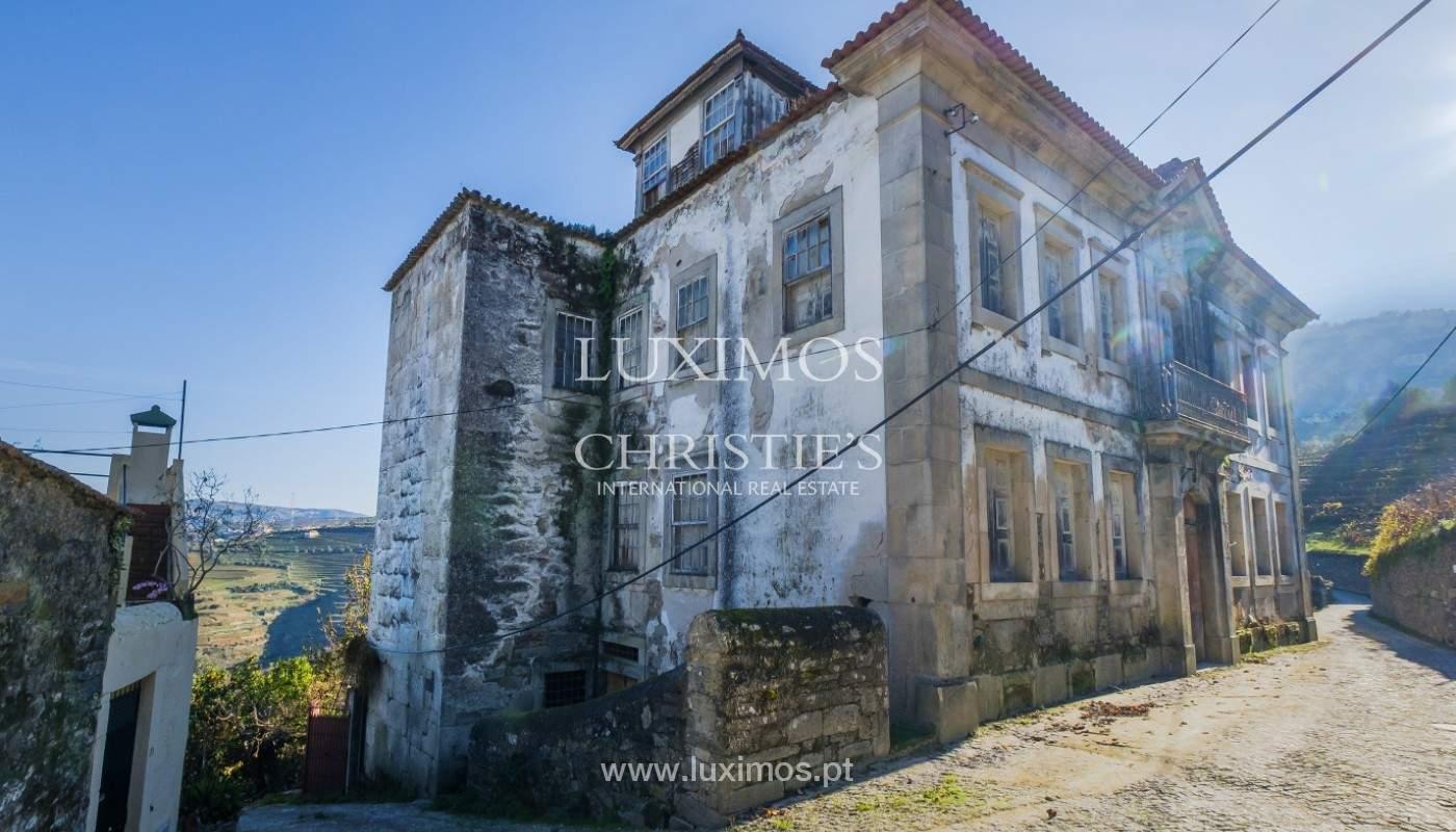 Venta de un palacio del siglo XIX para rehabilitar, Valle del Duero, Lamego, Portugal_157052