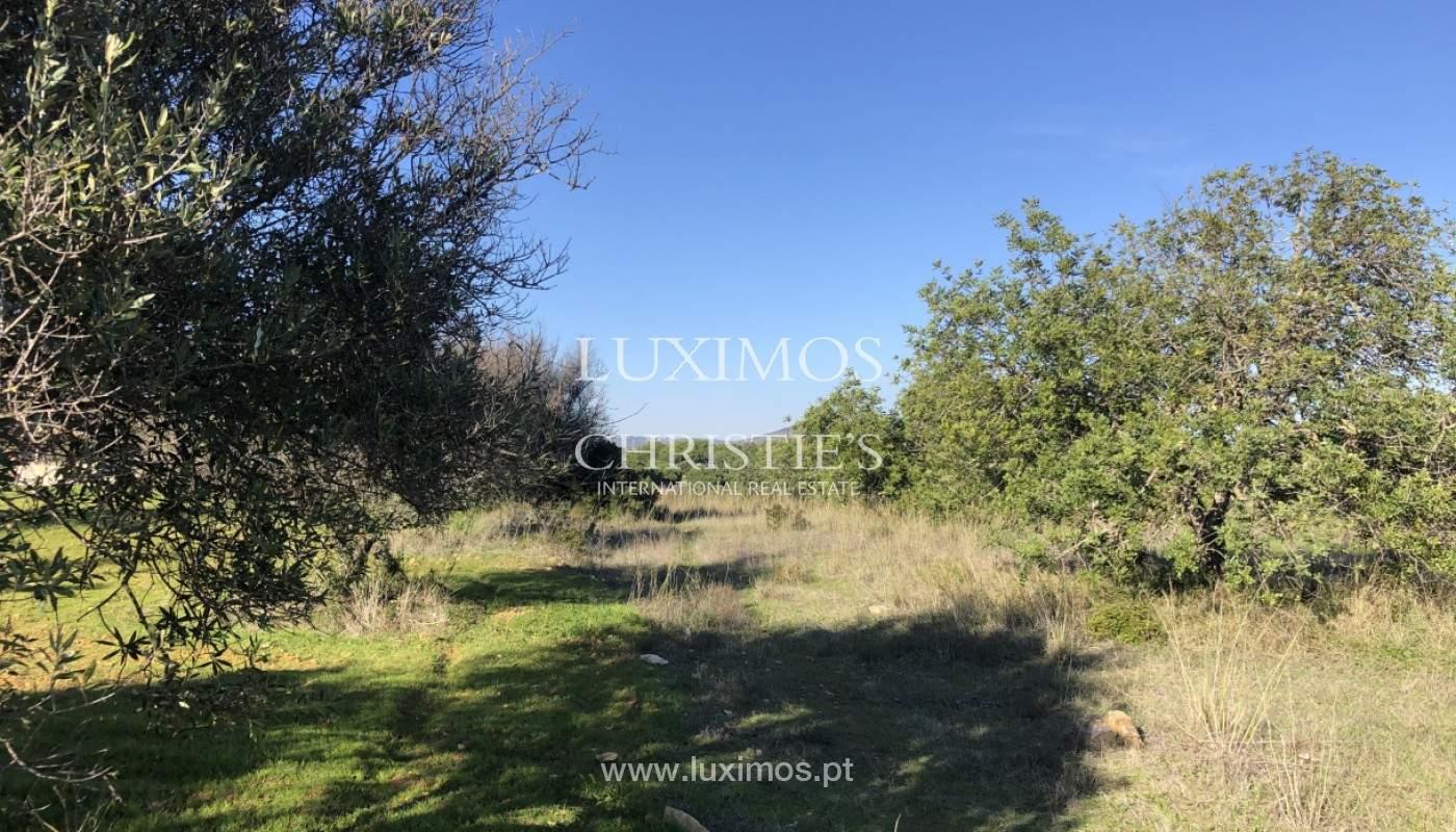 Parcelle avec viabilité de construction, Quarteira, Algarve_157424