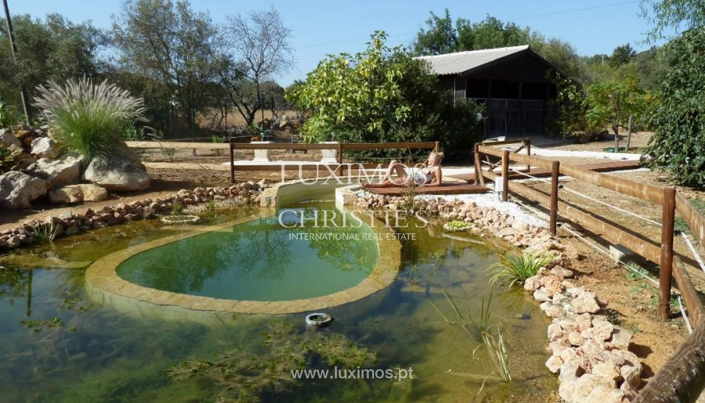 Ferme avec villa et grand terrain, São Brás de Alportel, Algarve_158947
