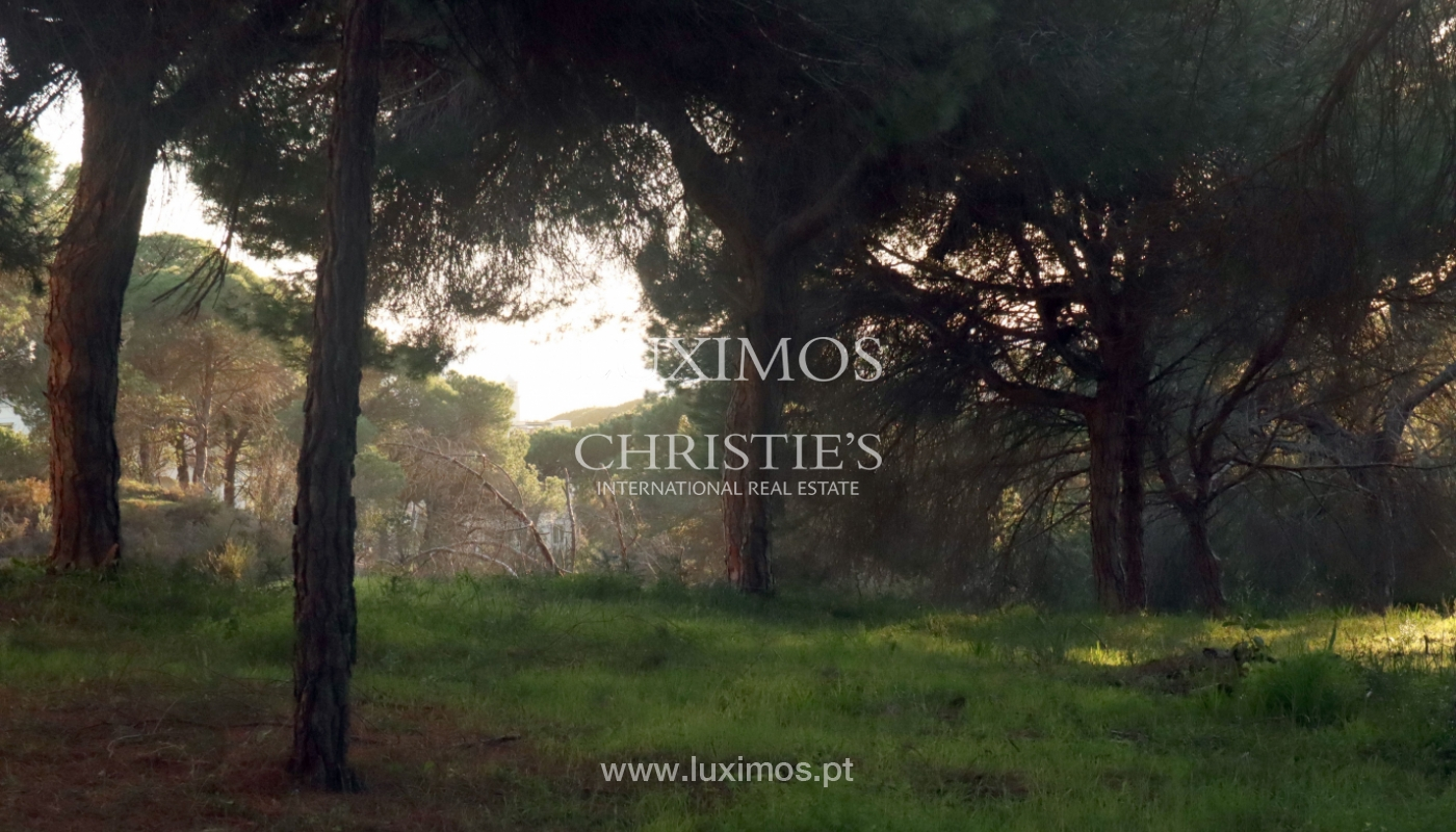 Plot of land with possibility to build a villa, Vale do Lobo, Algarve_159187