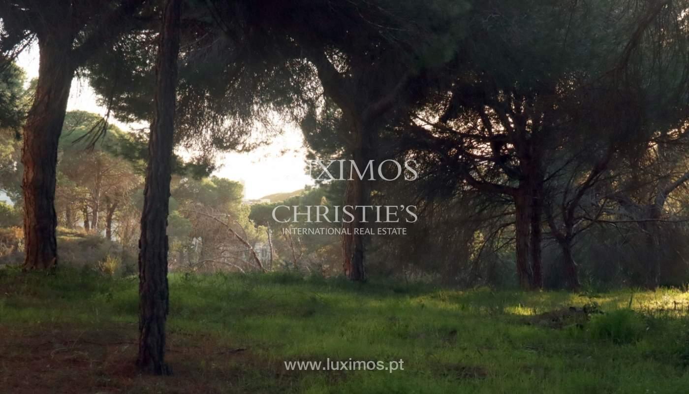 Terreno com possibilidade de construção de moradia, Vale do Lobo, Algarve_159205