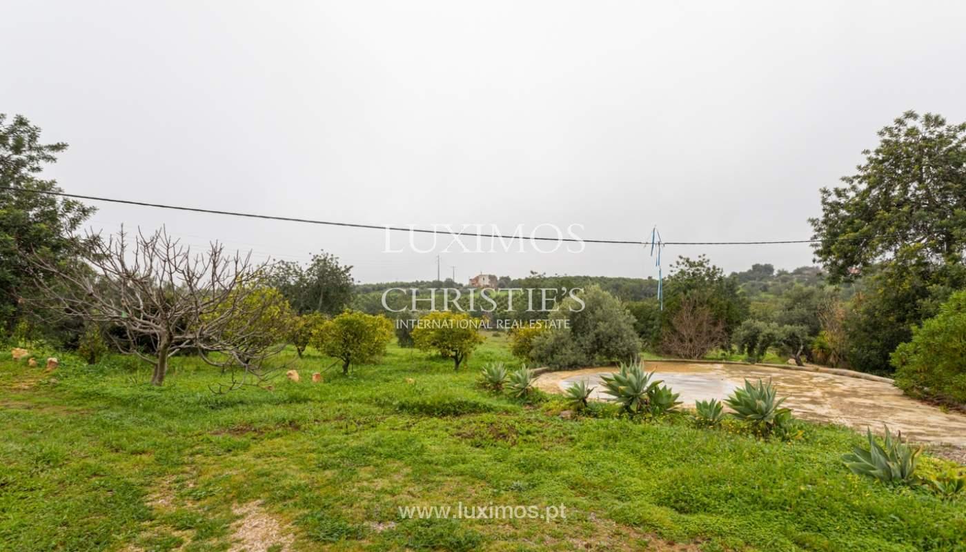 Ferme avec villa de 2 chambres et 2 chalets indépendants, Luz de Tavira, Algarve_161674