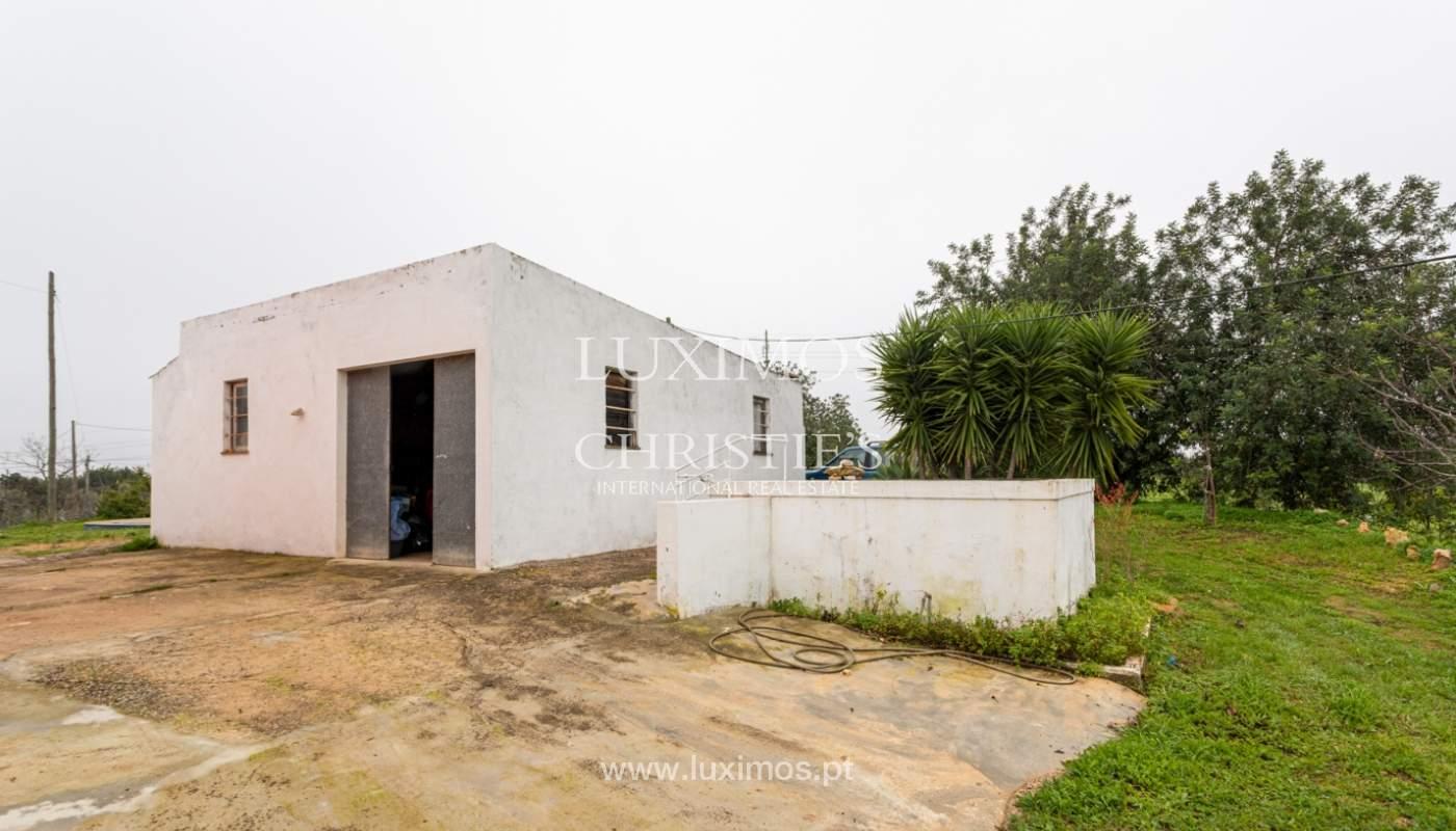 Ferme avec villa de 2 chambres et 2 chalets indépendants, Luz de Tavira, Algarve_161675