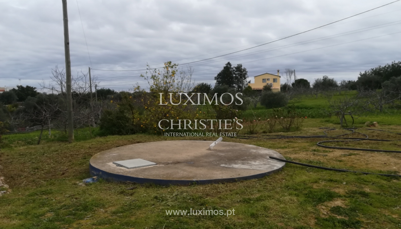 Ferme avec villa de 2 chambres et 2 chalets indépendants, Luz de Tavira, Algarve_162039