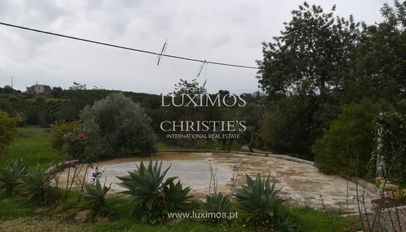 Ferme avec villa de 2 chambres et 2 chalets indépendants, Luz de Tavira, Algarve_162040