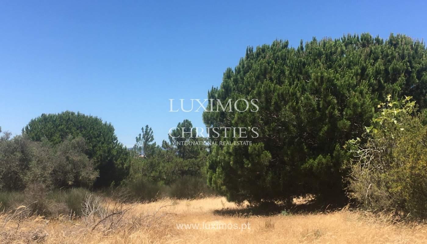 Land by the beach, for sale, Caramujeira, Lagoa, Algarve_173770