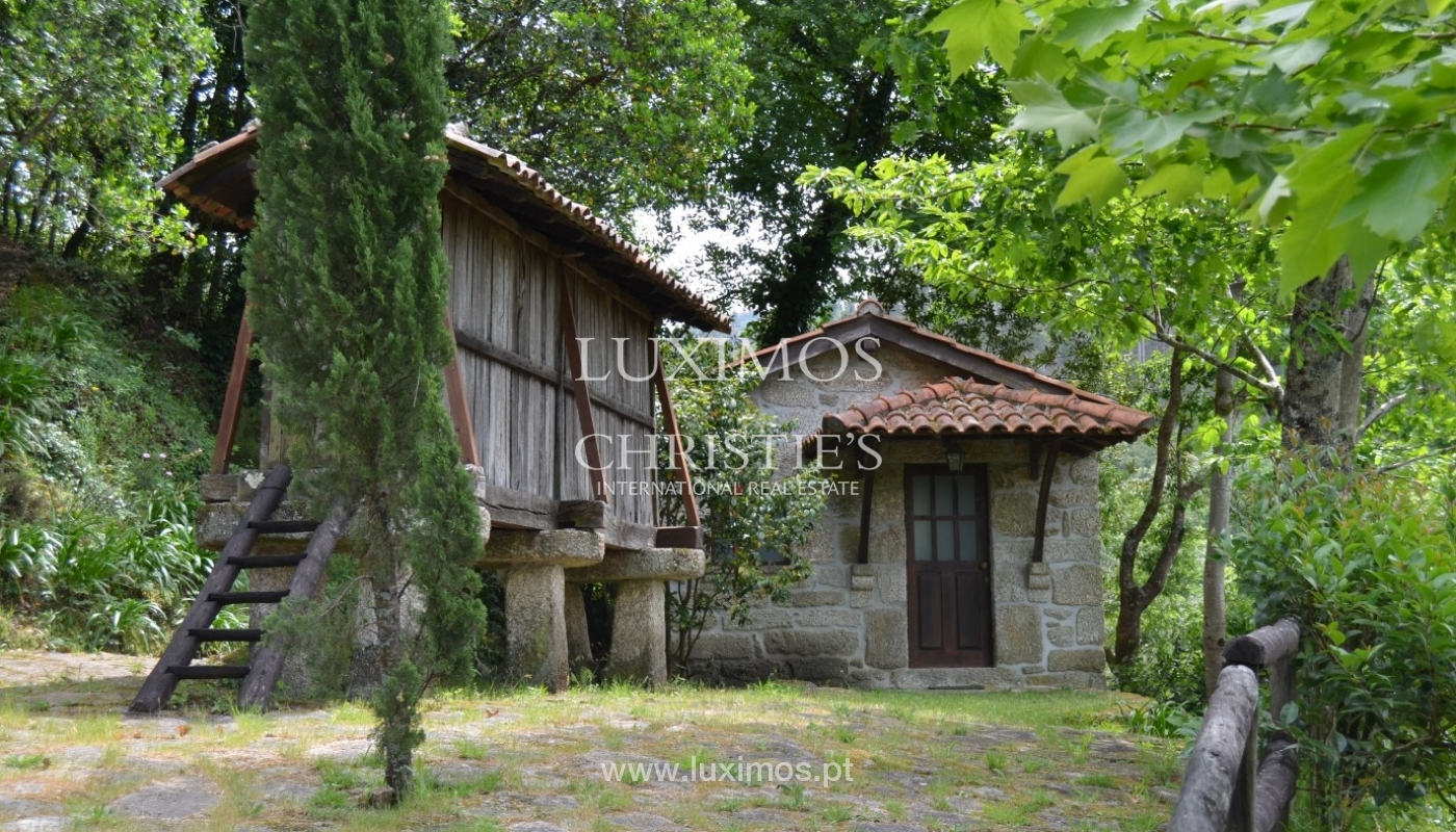 Villa for sale with river views, North of Portugal_18188