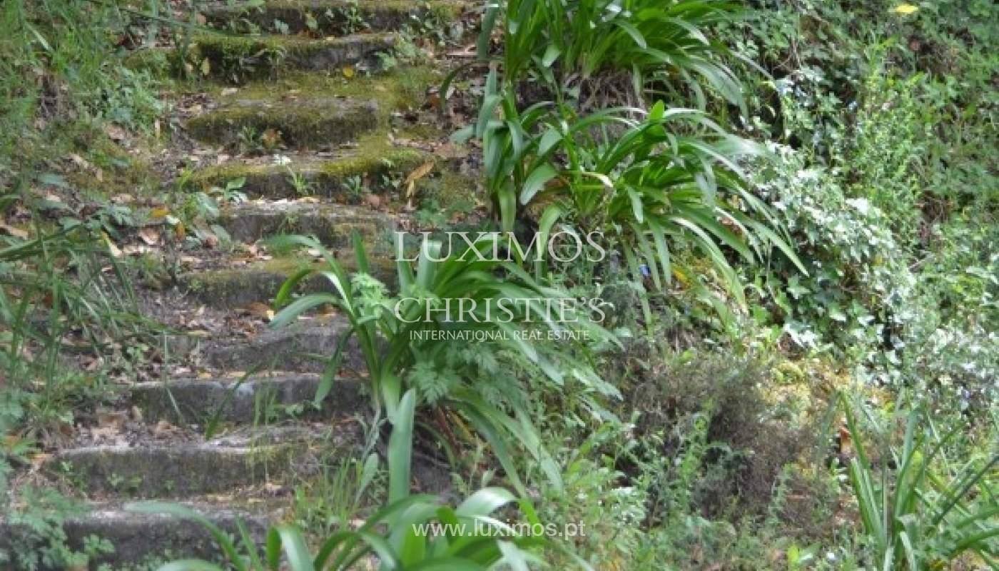 Moradia para venda com vistas rio, Soengas_18193