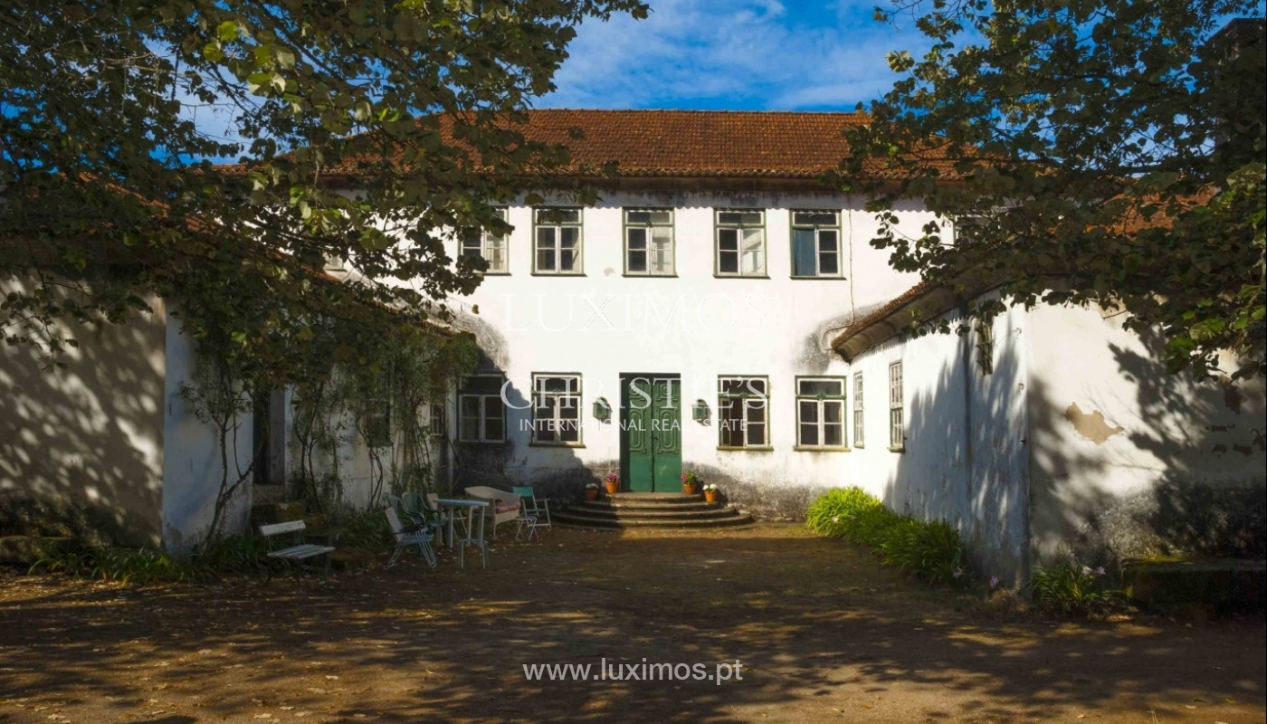 Farmhouse with views over the valley, Marco de Canaveses, Portugal_23741