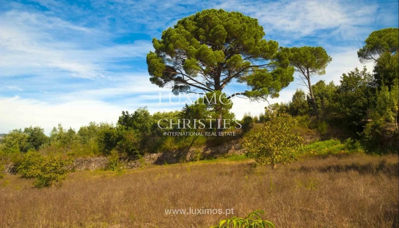 Ferme avec vue sur la vallée, Marco de Canaveses, Portugal_23753