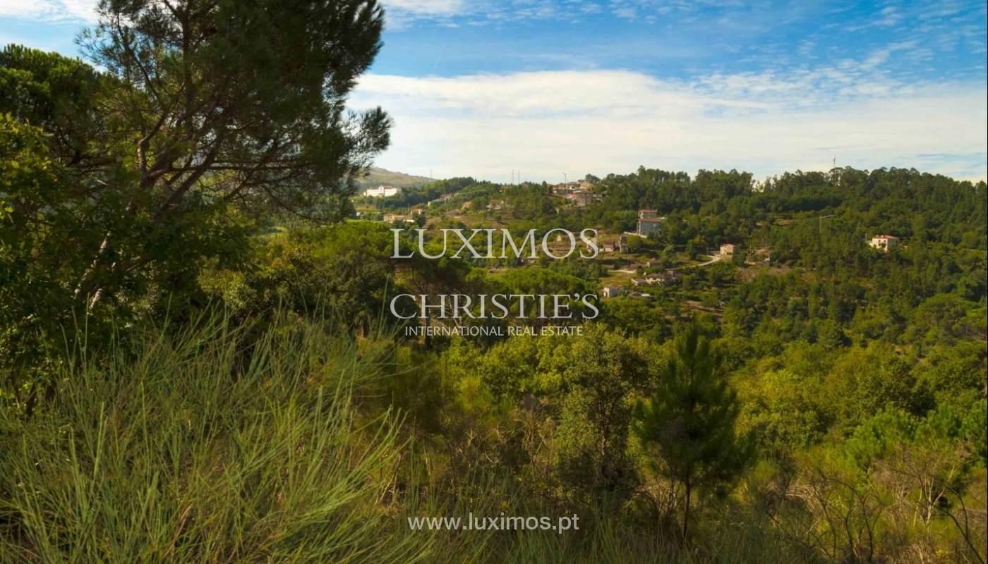 Ferme avec vue sur la vallée, Marco de Canaveses, Portugal_23754