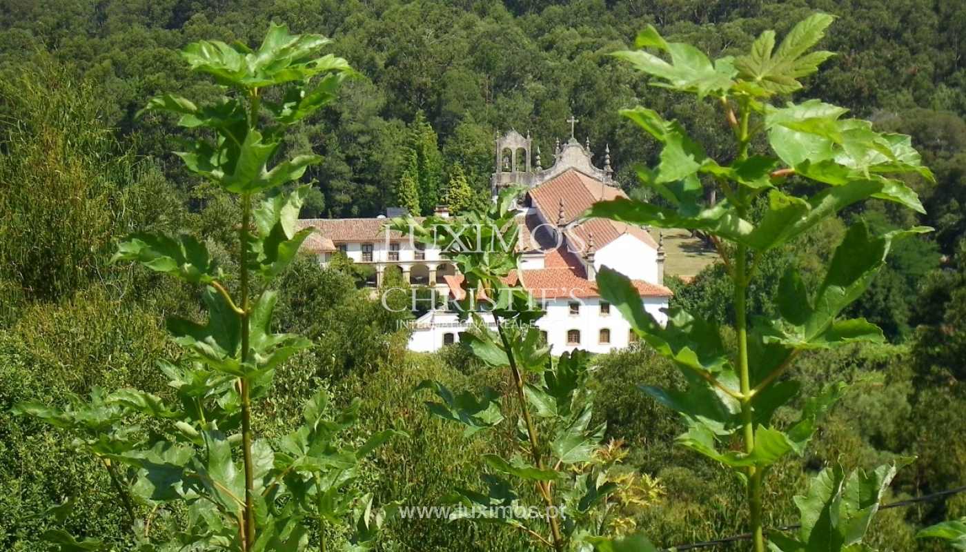Rural Tourism House with gardens and swimming pool, Barcelos, Portugal_28742