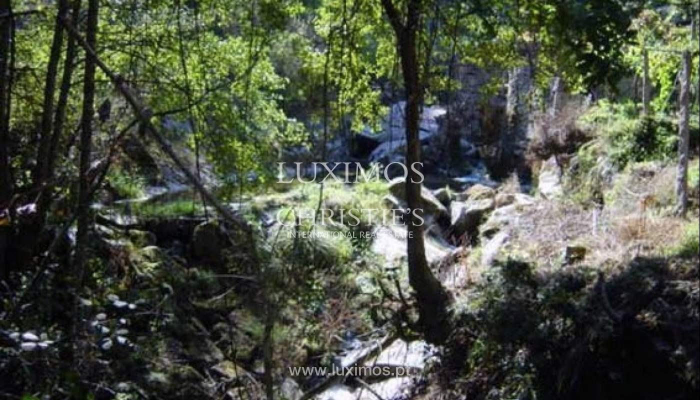Casa de Campo com potencial para agro-turismo, Arcos de Valdevez_31323