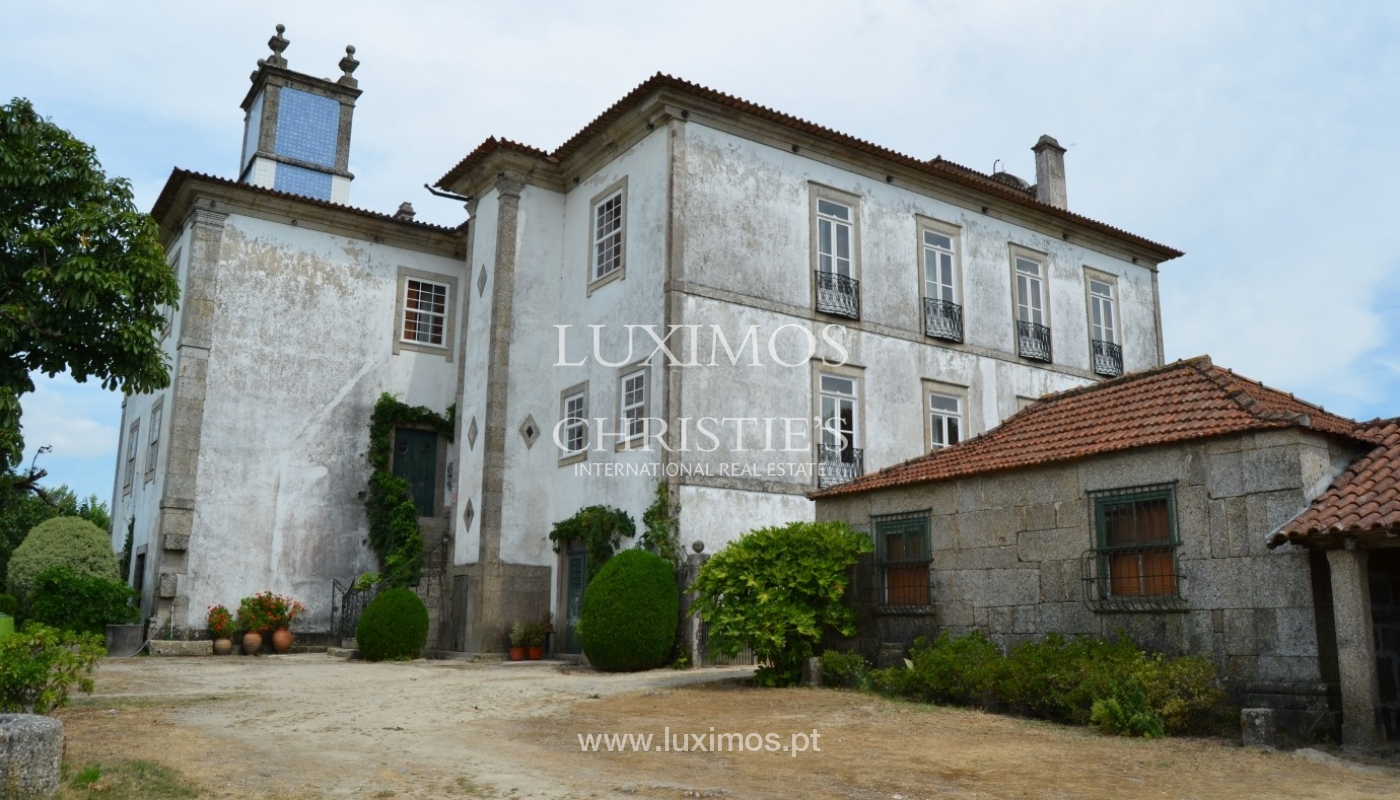 Country house with garden, lake and swimming pool, Penafiel, Portugal_33253