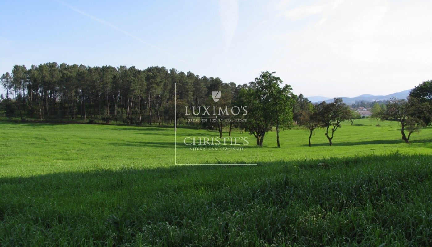 Country house with 4ha of plot area and swimming pool, Guimarães, Portugal_39489