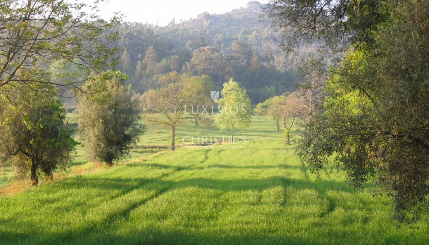 Country house with 4ha of plot area and swimming pool, Guimarães, Portugal_39527