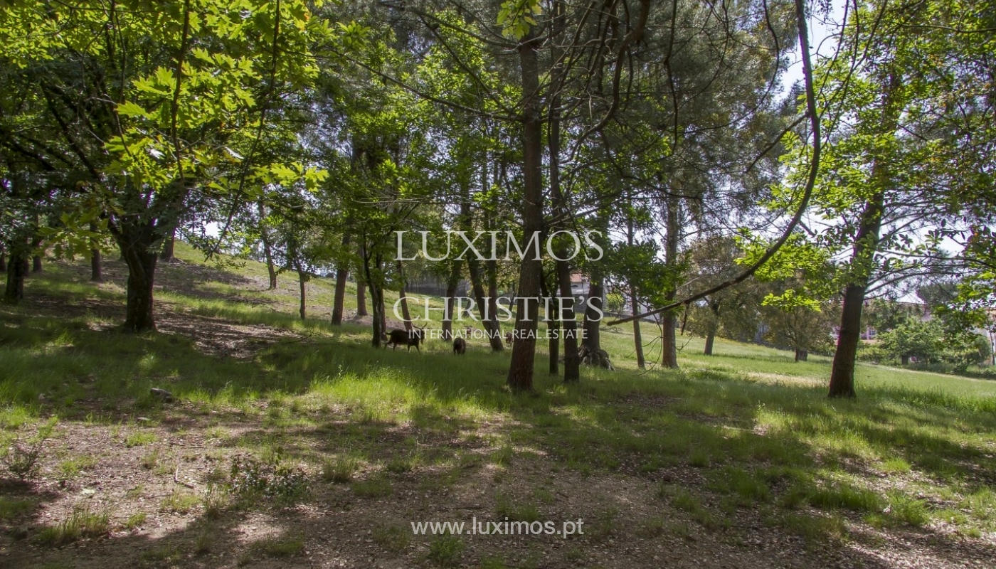 Luxury villa with garden and swimming pool, Guimarães, Portugal_40820