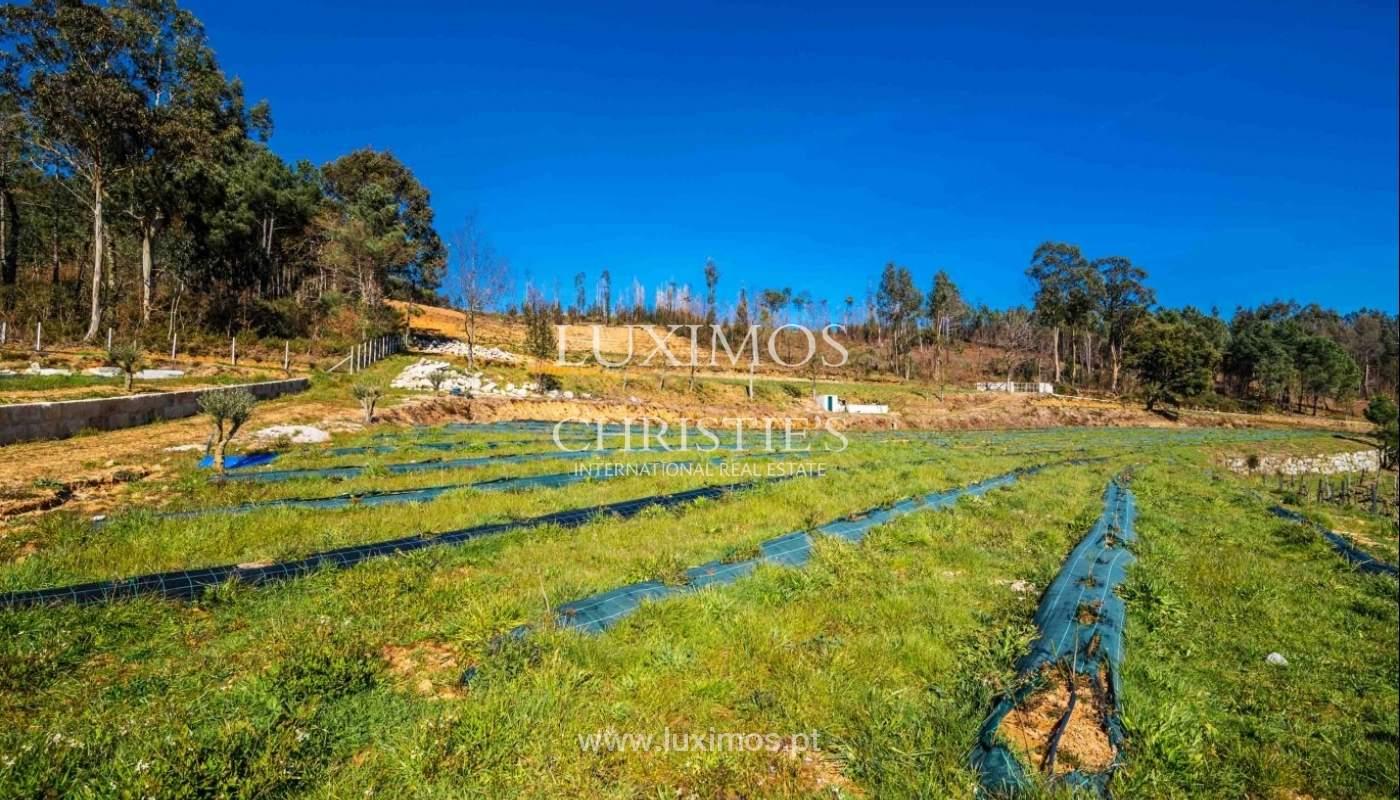 Finca con producción de vid y árboles frutales, Baião, Portugal_41434