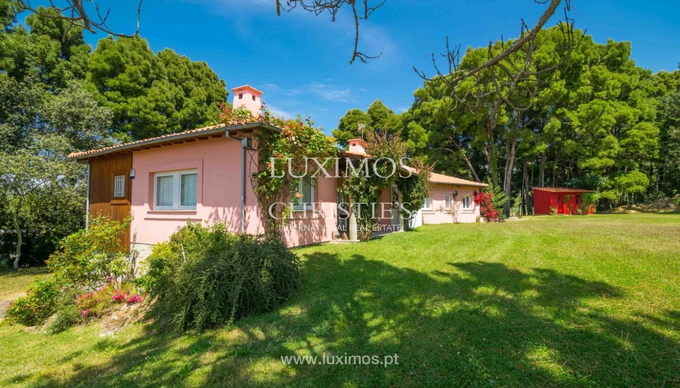 Villa with ocean views, garden and swimming pool, Moledo, Portugal_44858