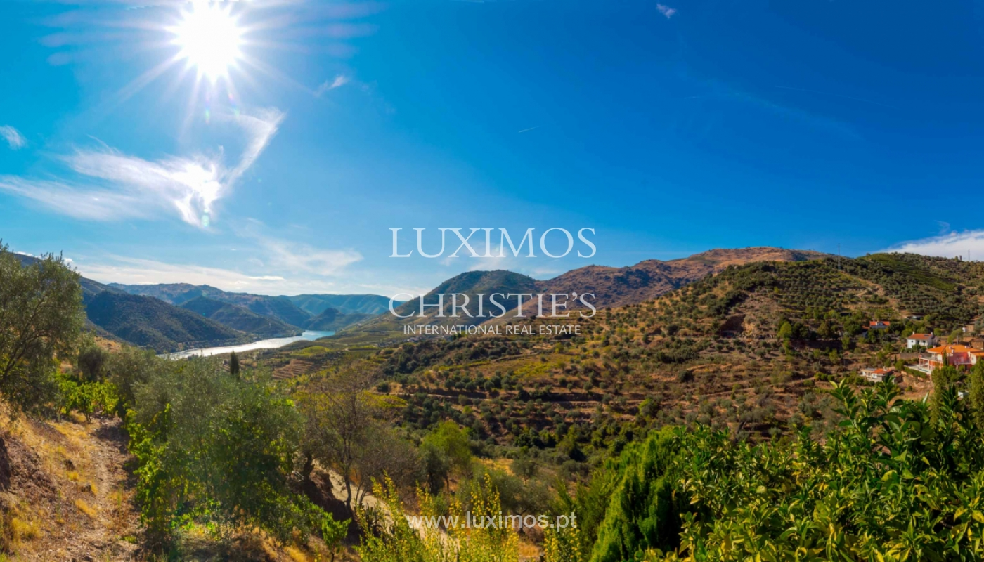 House with views to Douro river, Douro Demarcated Region, Portugal_47672