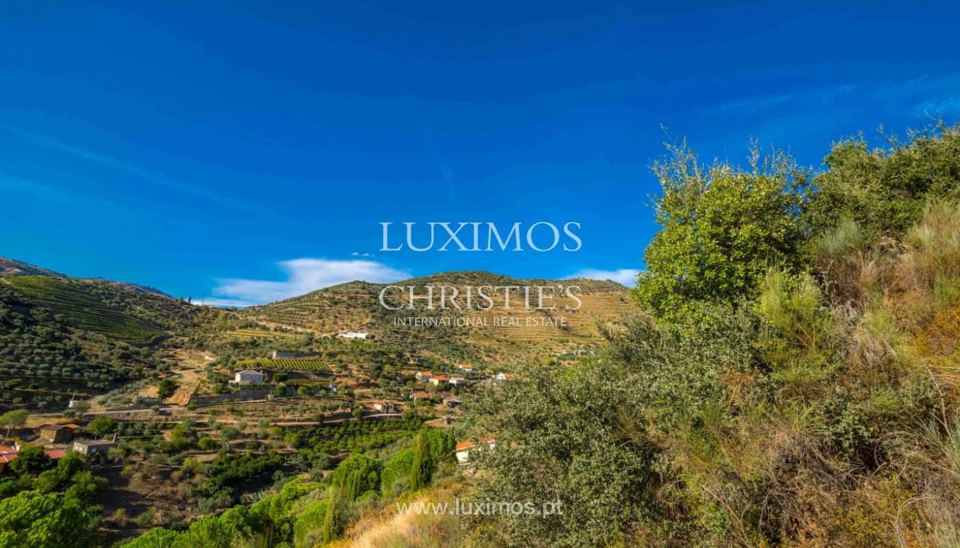 Quinta com magníficas vistas p/ o rio Douro, Alto Douro, Seixo Ansiães_47695