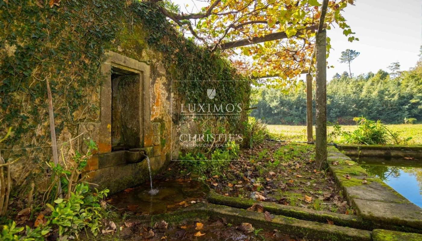 Quinta rústica com jardim, roseiral e tanque, Santa Maria da Feira_49699
