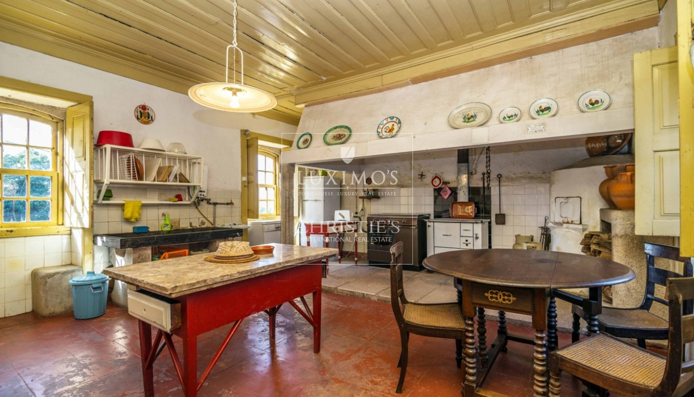 Quinta rústica com jardim, roseiral e tanque, Santa Maria da Feira_49730