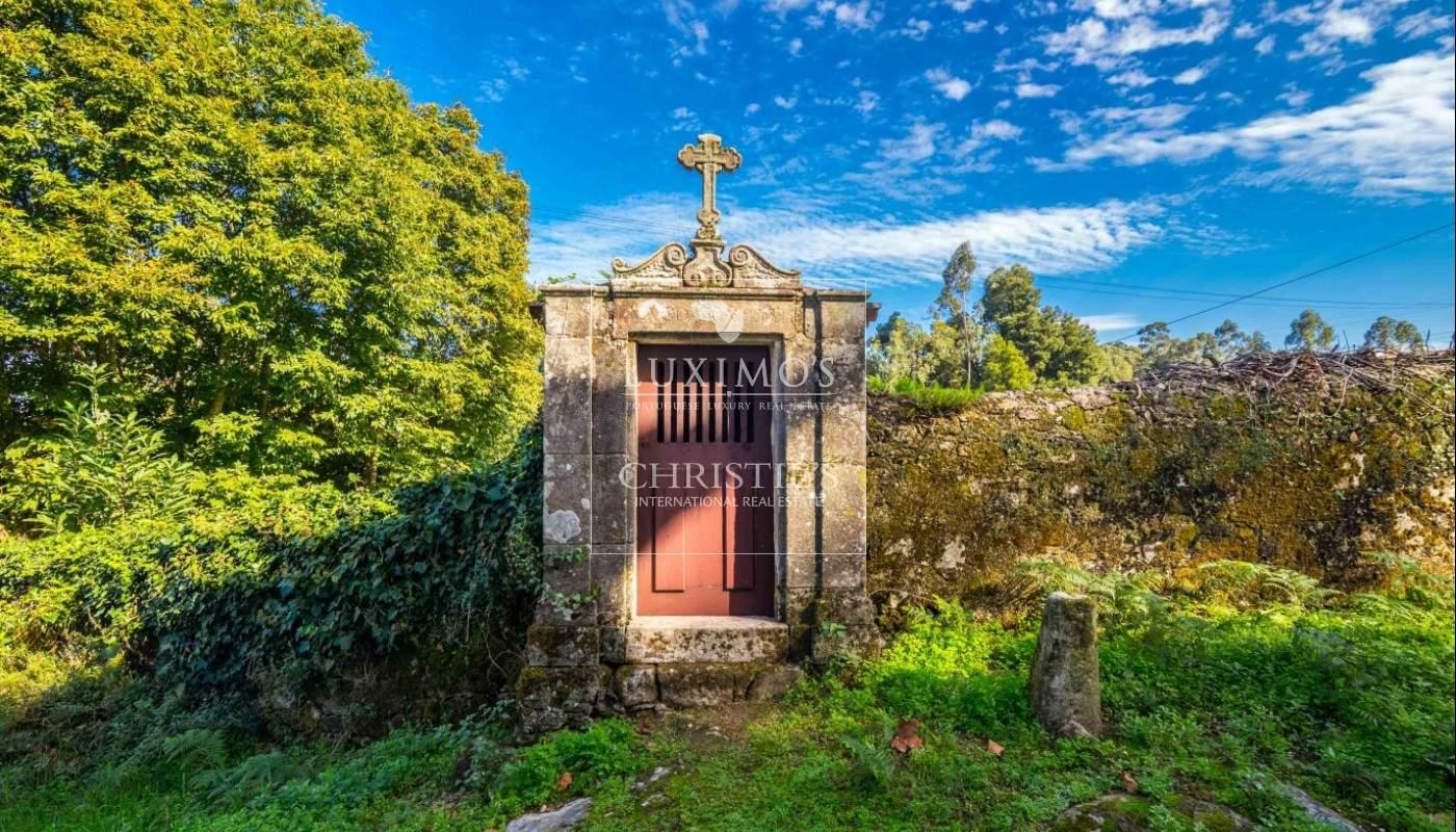 Quinta rústica com jardim, roseiral e tanque, Santa Maria da Feira_49738