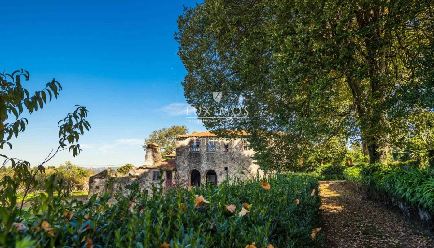 Quinta rústica com jardim, roseiral e tanque, Santa Maria da Feira_49739