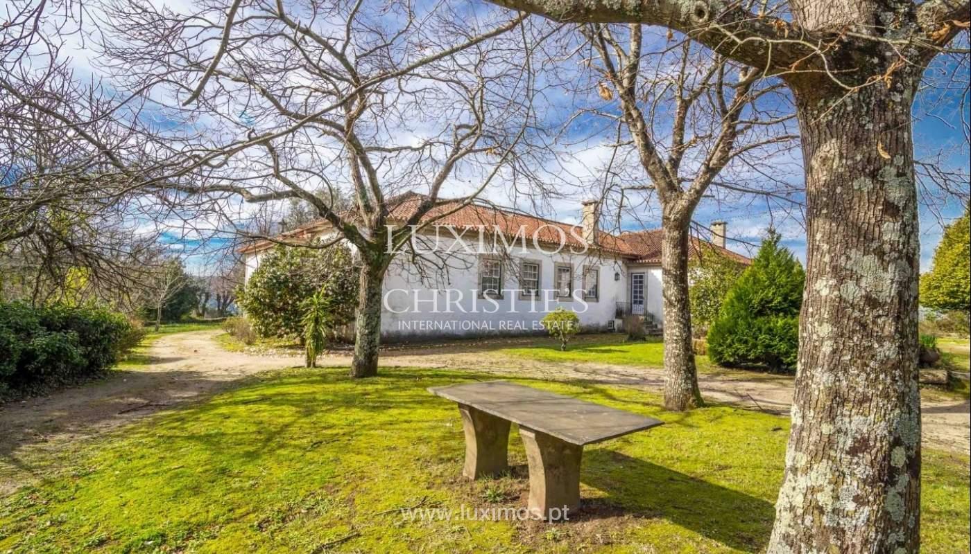 Quinta com amplo jardim, árvores de fruto e bosque, Santo Tirso_52429