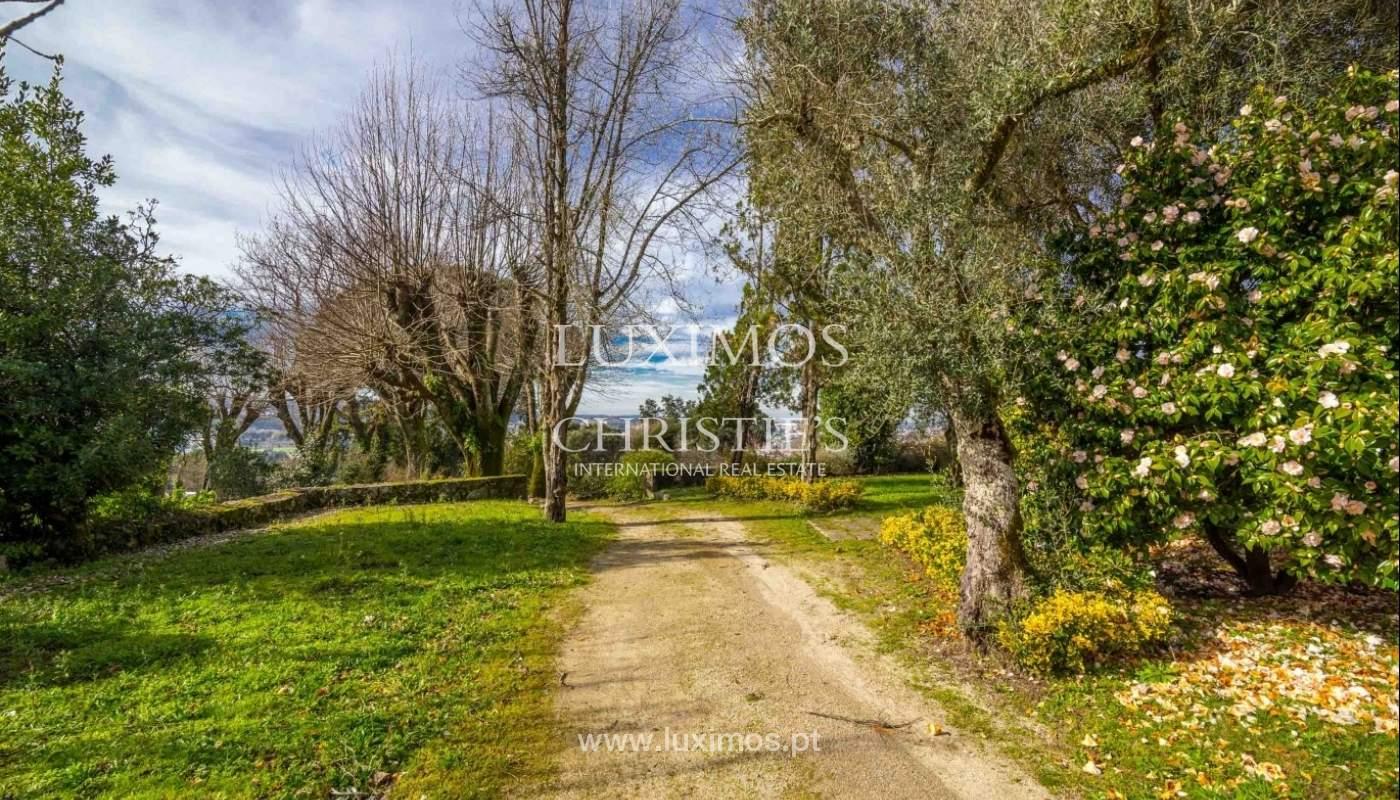 Quinta com amplo jardim, árvores de fruto e bosque, Santo Tirso_52432