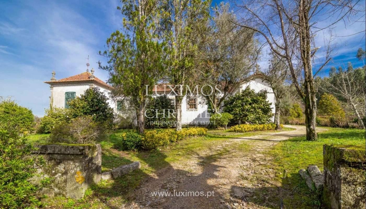 Quinta com amplo jardim, árvores de fruto e bosque, Santo Tirso_52435