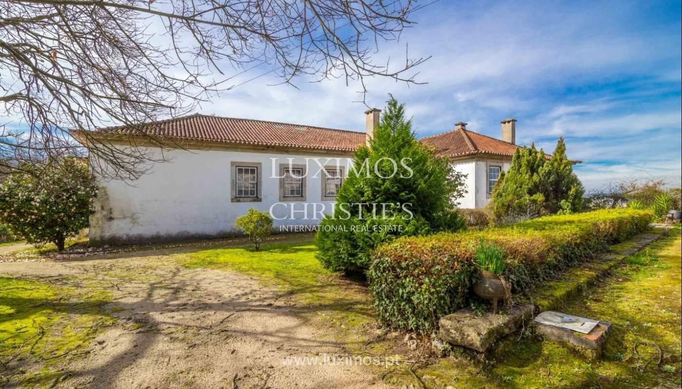 Quinta com amplo jardim, árvores de fruto e bosque, Santo Tirso_52437