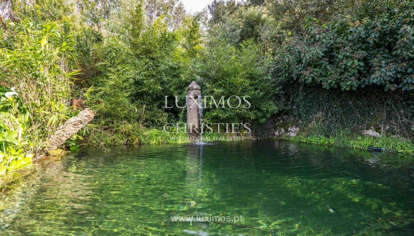 Quinta com amplo jardim, árvores de fruto e bosque, Santo Tirso_52461