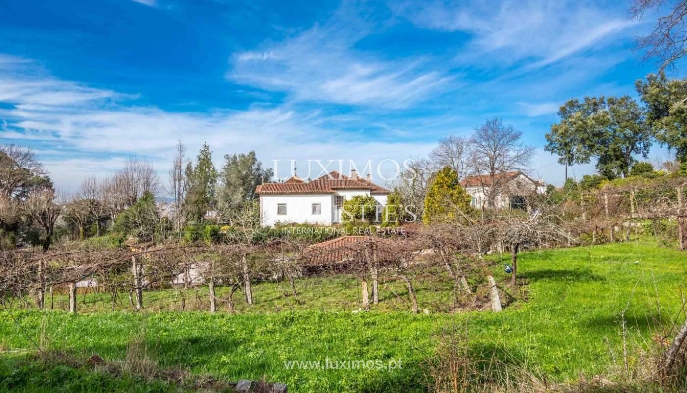 Quinta com amplo jardim, árvores de fruto e bosque, Santo Tirso_52462
