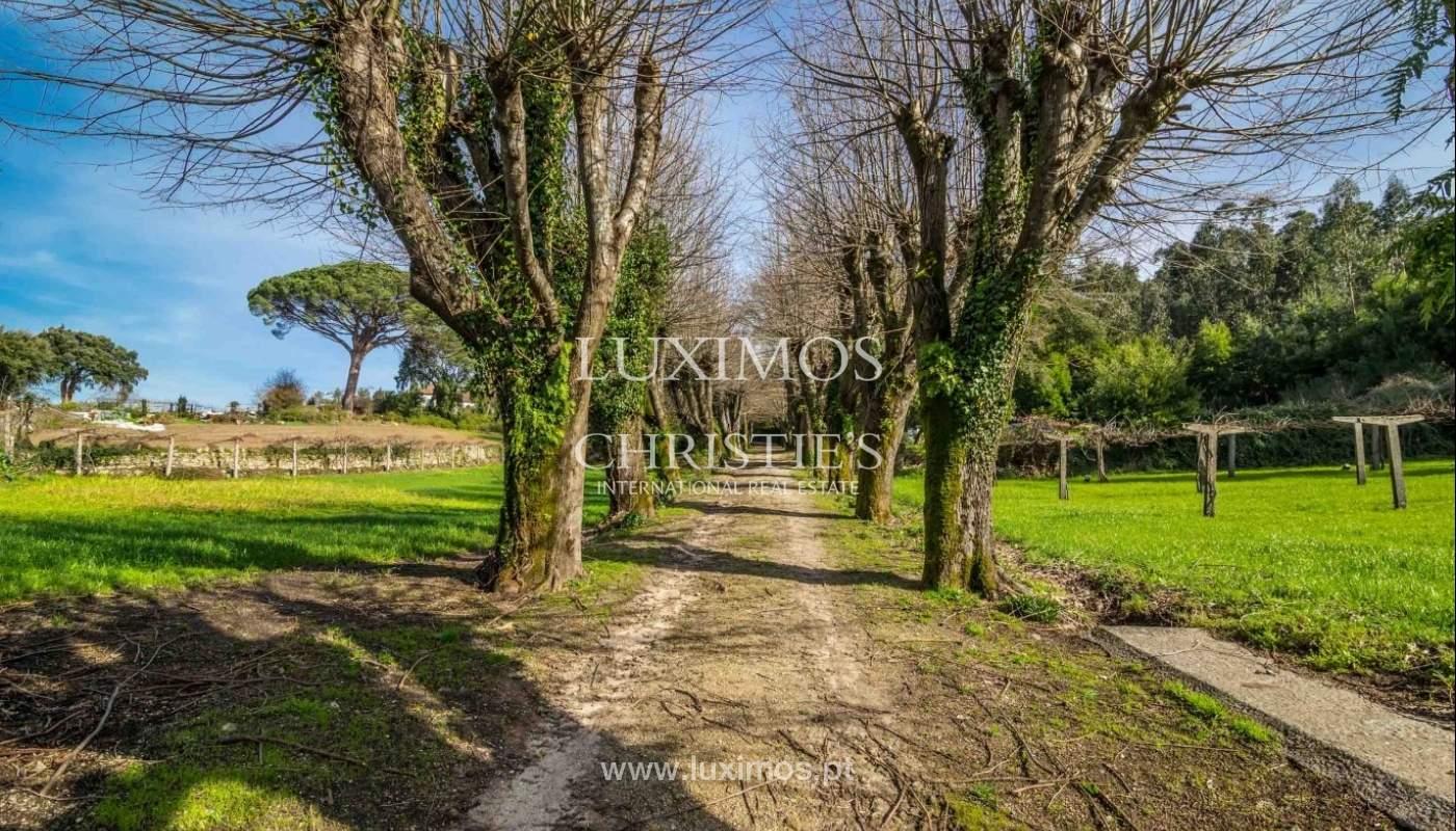Ferme avec jardin, arbres fruitiers et de bois, Santo Tirso, Portugal_52463