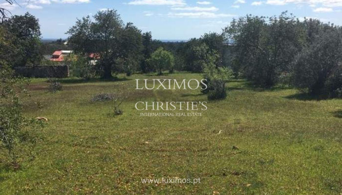 Venda de terreno, Cerro da Cabeça Alta, Loulé, Algarve_54592