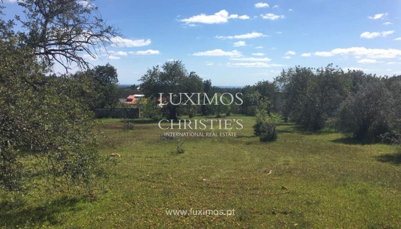 Venda de terreno, Cerro da Cabeça Alta, Loulé, Algarve_54593