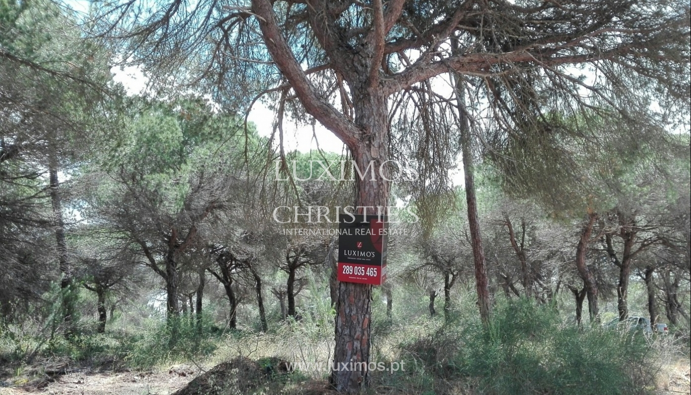 Plot area for sale, near the beach, Vale de Garrão, Algarve, Portugal_57257
